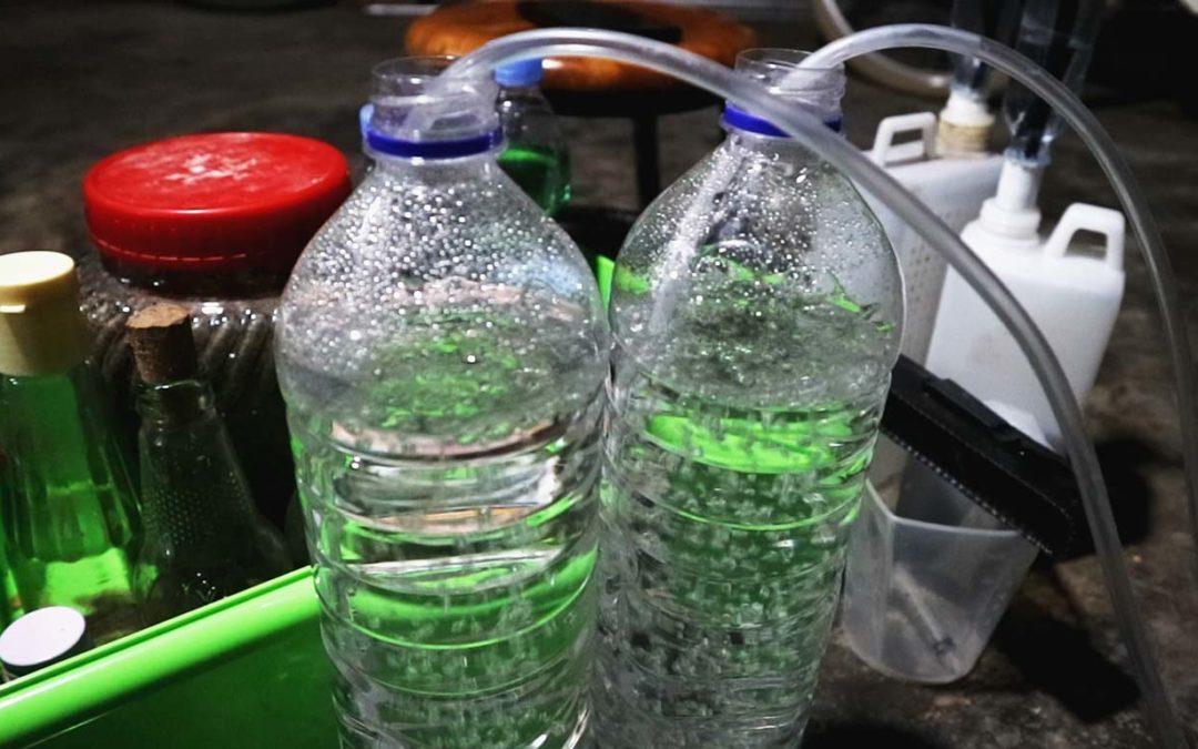 Mengatasi Busuk Akar Dengan Oksigen Terlarut Dalam Air