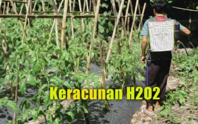 Pengalaman: Keracunan Hidrogen Peroksida (h2o2)