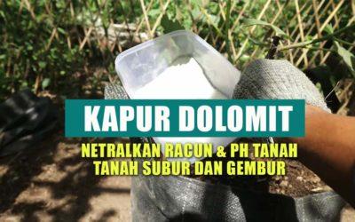 Menetralkan PH Tanah Dengan Kapur Dolomit